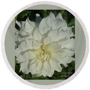 Innocent White Dahlia  Round Beach Towel