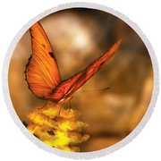 Insect - Butterfly - Just A Bit Of Orange  Round Beach Towel
