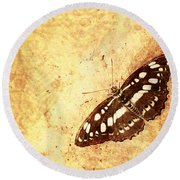 Insect Study Number 66 Round Beach Towel