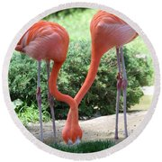 Intertwined Flamingoes Round Beach Towel