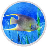 Into Blue - Tropical Fish By Sharon Cummings Round Beach Towel
