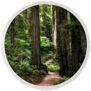 Into The Magical Forest Round Beach Towel