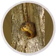 iPhone Squirrel In A Hole Round Beach Towel