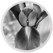 Iris 2 Monochrome Round Beach Towel