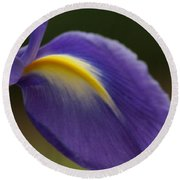 Iris 7 Round Beach Towel