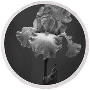 Iris After The Rain Round Beach Towel