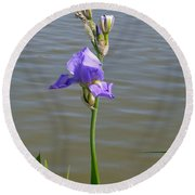Iris At The Lake Round Beach Towel