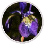 Iris Baroque Round Beach Towel