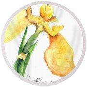 Iris Blooms  Round Beach Towel by Sherry Harradence
