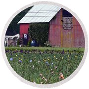 Iris Field And Barn Round Beach Towel