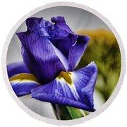 Iris Flower Macro Round Beach Towel
