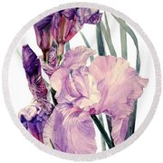 Watercolor Of An Elegant Tall Bearded Iris In Pink And Purple I Call Iris Joan Sutherland Round Beach Towel
