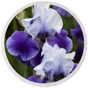 Iris Purple And White Fine Art Floral Photography Print As A Gift Round Beach Towel