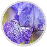 Iris Purple Pepper Round Beach Towel