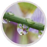 Iris Versicolor Reflection Round Beach Towel