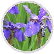 Irises Round Beach Towel