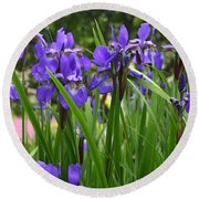 Irises In Spring Round Beach Towel
