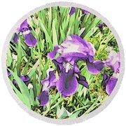 Irises In The Garden Round Beach Towel