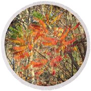 Is It Live Or Is It Memorex Round Beach Towel by Frozen in Time Fine Art Photography