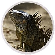 Island Lizards Three Round Beach Towel