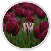 It Is Beautiful Being Different Round Beach Towel by Bob Christopher