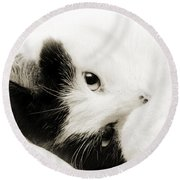 It Is Hard To Be So Cute Round Beach Towel