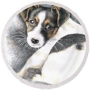 Jack Russell Puppy Round Beach Towel