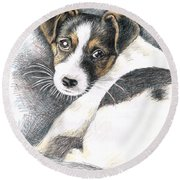 Jack Russell Puppy Round Beach Towel