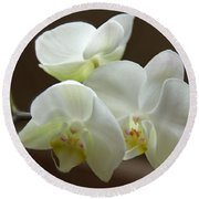 Jack's Orchids Round Beach Towel