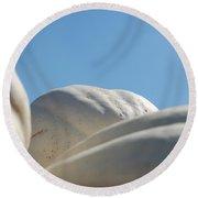 Jammer Gourd Skies 001 Round Beach Towel