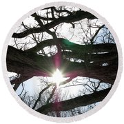 Jammer Lateralus Branching Trees Round Beach Towel