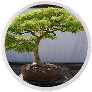 Japanese Bonsai Tree In National Round Beach Towel