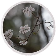 Japanese Cherry Blossoms Round Beach Towel