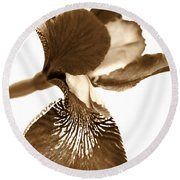 Japanese Iris Flower Sepia Brown Round Beach Towel