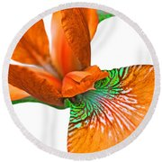 Japanese Iris Orange White Five Round Beach Towel