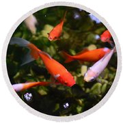 Japanese Koi Fish Round Beach Towel