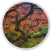 Japanese Maple Tree Round Beach Towel