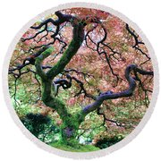 Japanese Tree In Garden Round Beach Towel