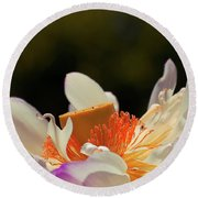Japenese Jewel Round Beach Towel by Aimelle