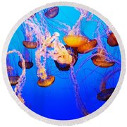 Jellyfish In Abundance Round Beach Towel