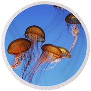 Jellyfish Swarm Round Beach Towel