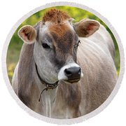 Jersey Cow With Attitude - Vertical Round Beach Towel