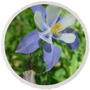 Jewel In The Glade  Round Beach Towel