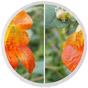 Jewelweed Flower In Stereo Round Beach Towel