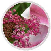 Asclepias And Friend Round Beach Towel