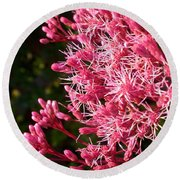 Joe Pye Weed Round Beach Towel