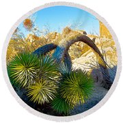 Joshua Tree Bowing Down At Quail Springs In Joshua Tree Np-ca Round Beach Towel