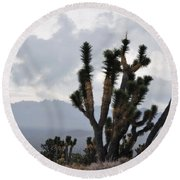 Joshua Tree Forest Ivanpah Valley Round Beach Towel
