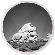Joshua Tree Holga 9 Round Beach Towel