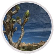 Joshua Tree In Joshua Tree National Park No. 279 Round Beach Towel